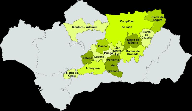 Denominacion de Oliva aceites de andalucia