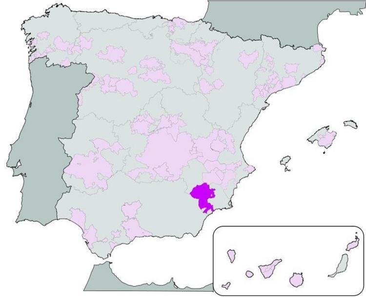 Bullas (vino)