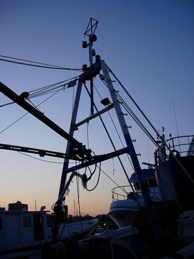 En el puerto pesquero de Mazarrón