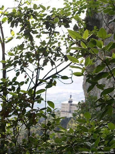 Santuario de la Font Roja y su mirador, vista entre los arboles frondosos del Parque el Carrascal, I