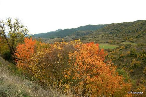 Vista entre Lerga y Ujue, Navarra, España