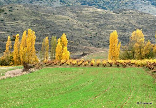 Entre Lerga y Ujué, Navarra, España