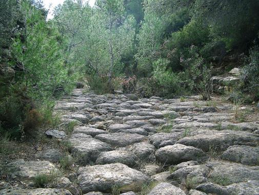 Vista de los Vestigos de un lecho de agua en Pedralba