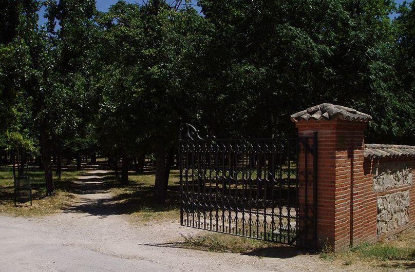 Reservado Grande. Casa de Campo. Madrid