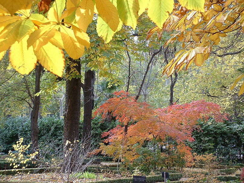Jardín Botánico de Madrid tomada en otoño