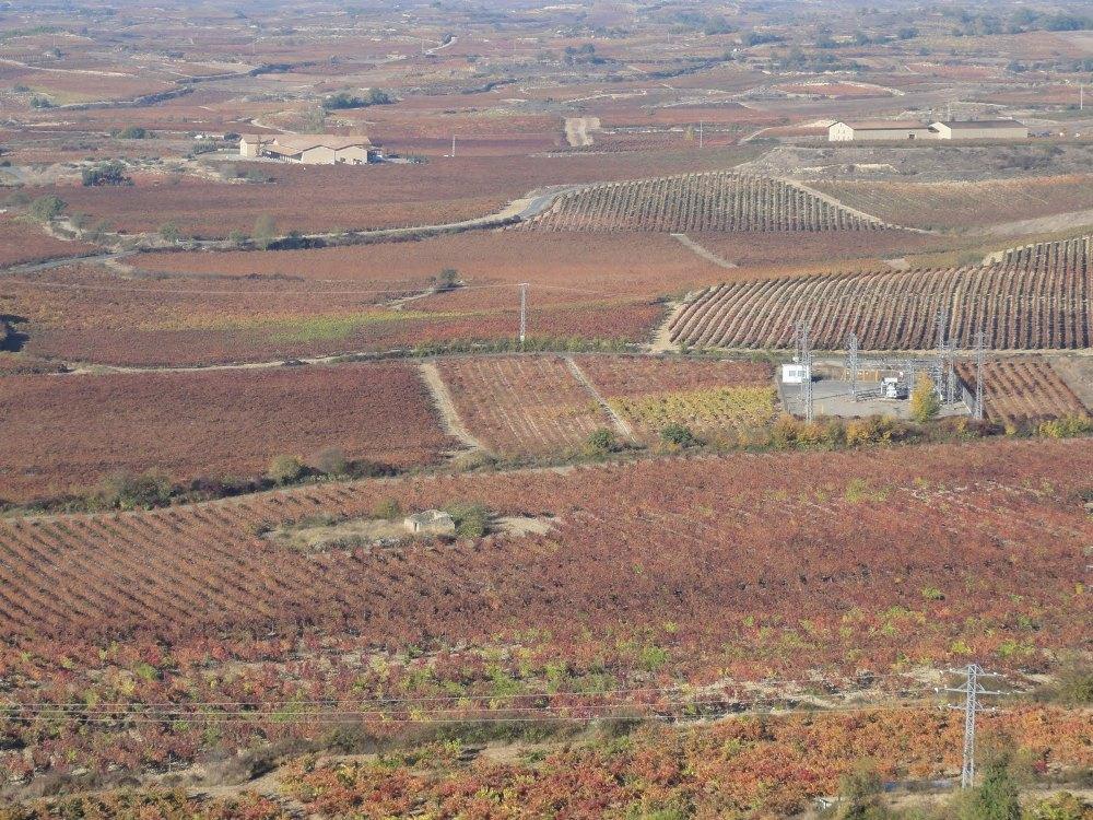 Por tierras de La Rioja Alavesa