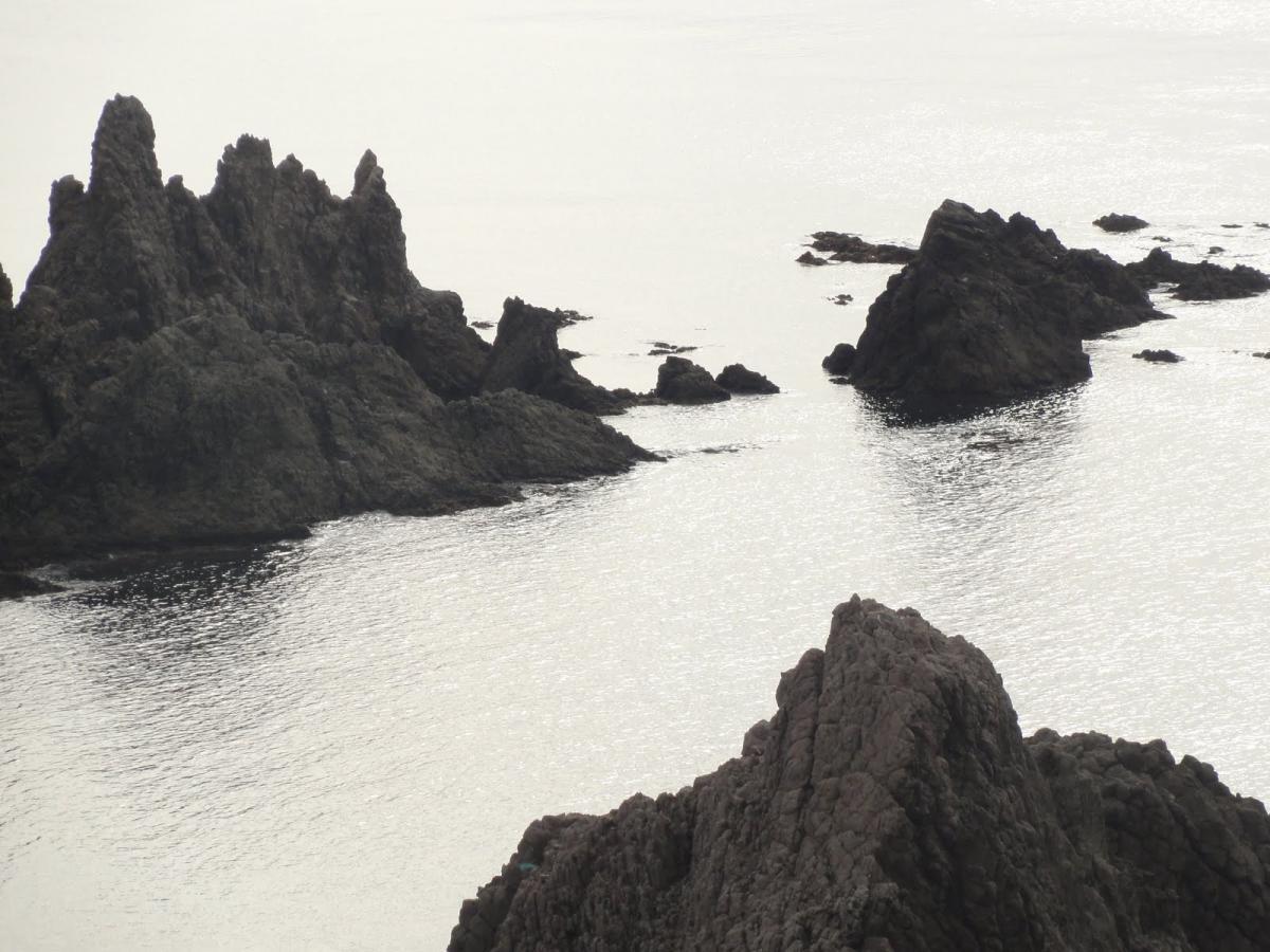 Escollo de la Sirena en Gata-Nijar