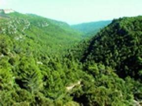 Alcover: La Vall del Glorieta