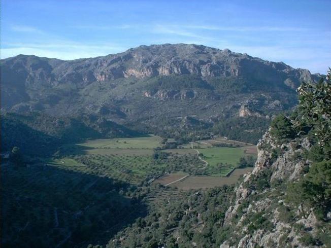 Camino hacia el Puig Caragoler de Femenia, Mallorca, islas Baleares