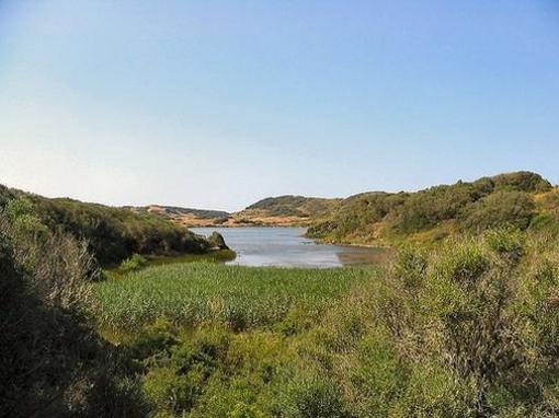 Parque Natural de s'Albufera d'Es Grau, Illa d'en Colom i Cap de Favàritx,  Menorca, islas Baleares