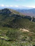 Laderas y vegetación de los senderos de Pedreguer en Marina Alta
