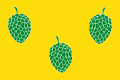 Flag of Pina de Ebro (Aragon). Yellow proportion cloth 2/3, with three low pineapples, two in it to