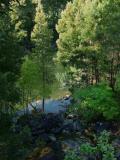 Río Tambre Noya