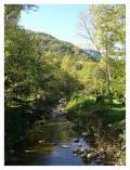 Riu Gurn a la Vall d'en Bas